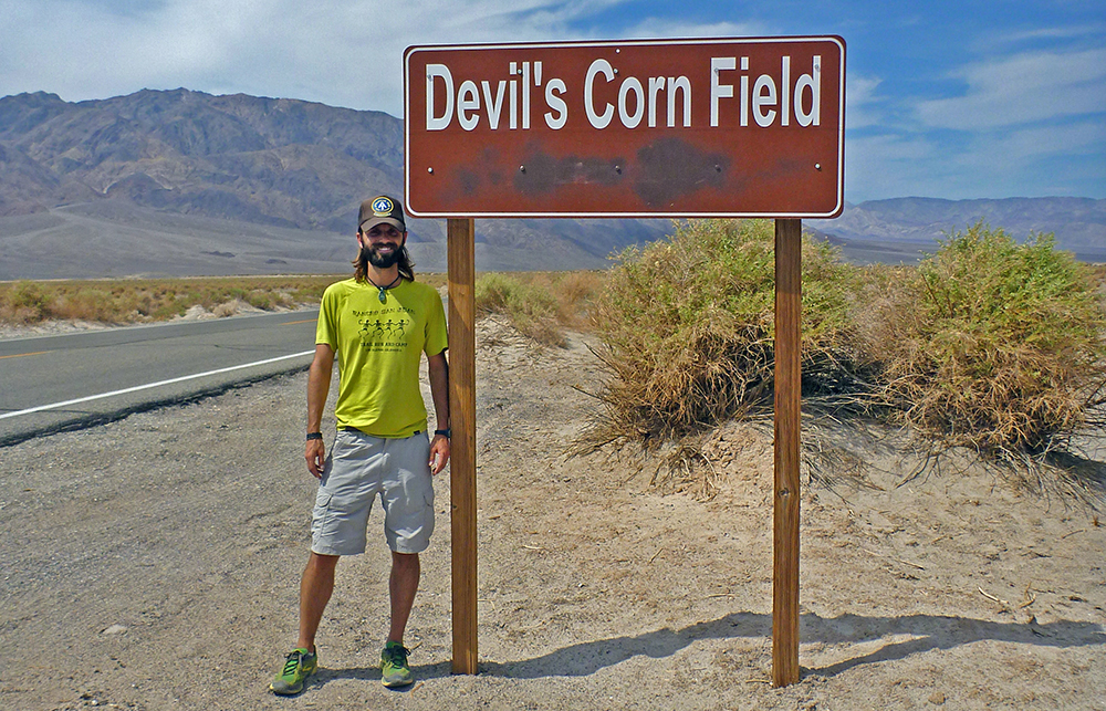 Hanging out in a different type of cornfield in Death Valley
