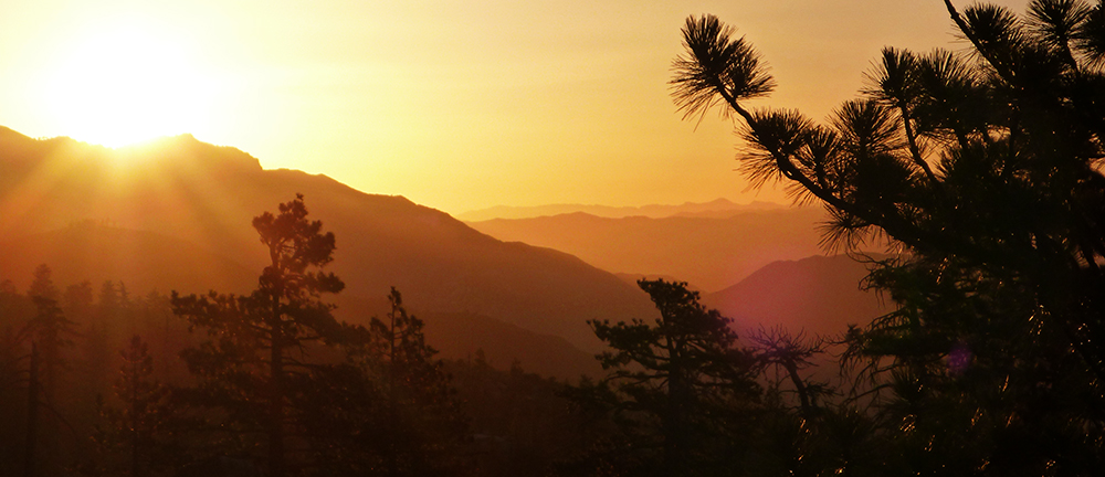 Chris Tarzan Clemens - Sunrise Mission Pines