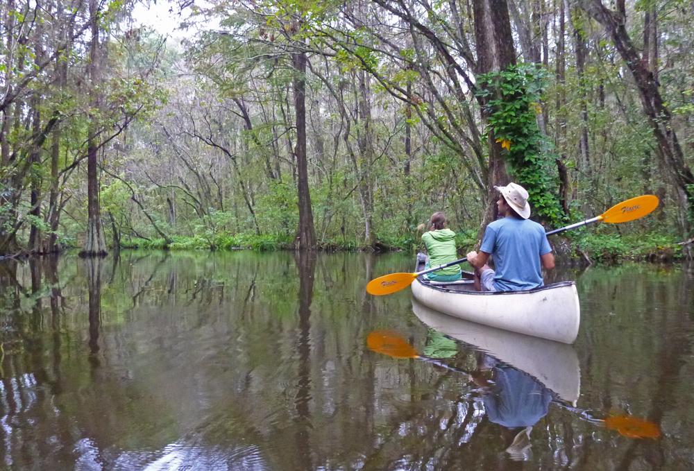 Chris Tarzan Clemens - Dora Canal