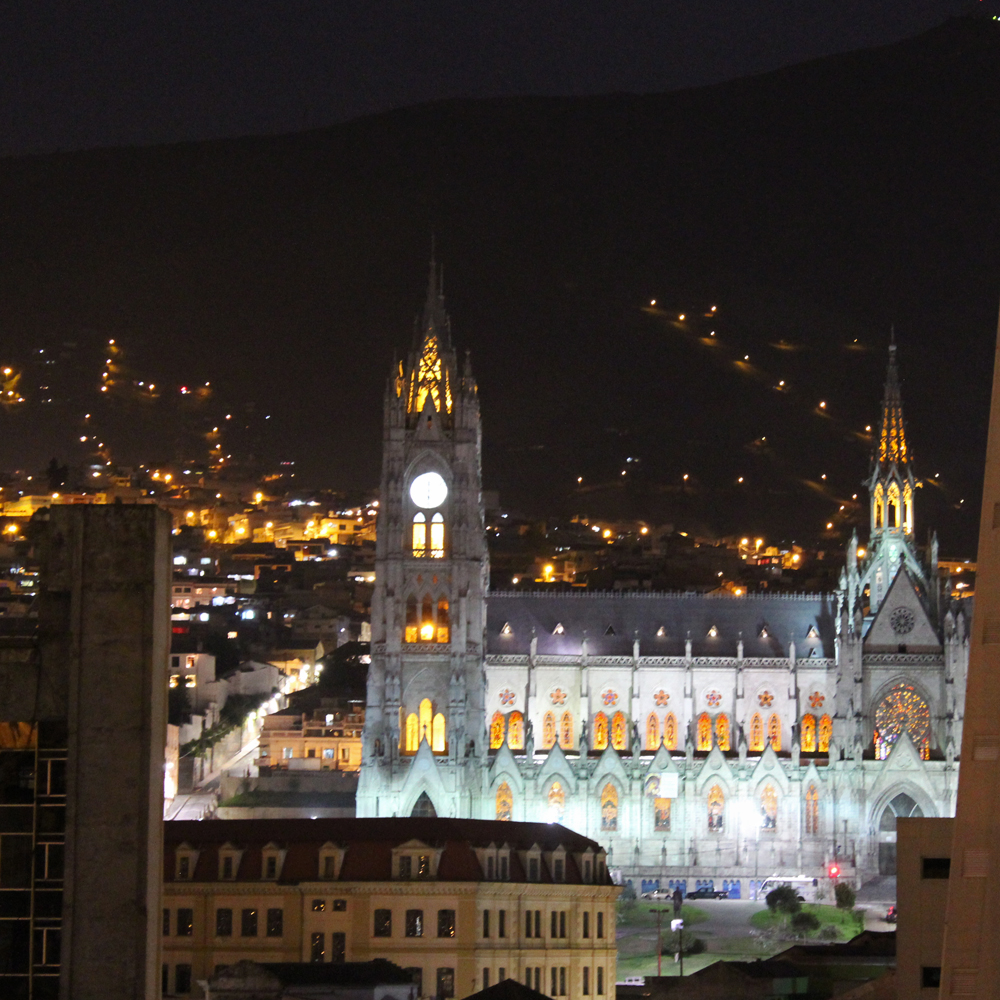 Chris Tarzan Clemens - Basílica del Voto Nacional