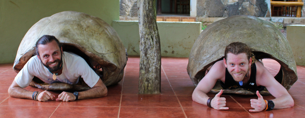 Chris Tarzan Clemens - Rancho Primicias Turtle Shells