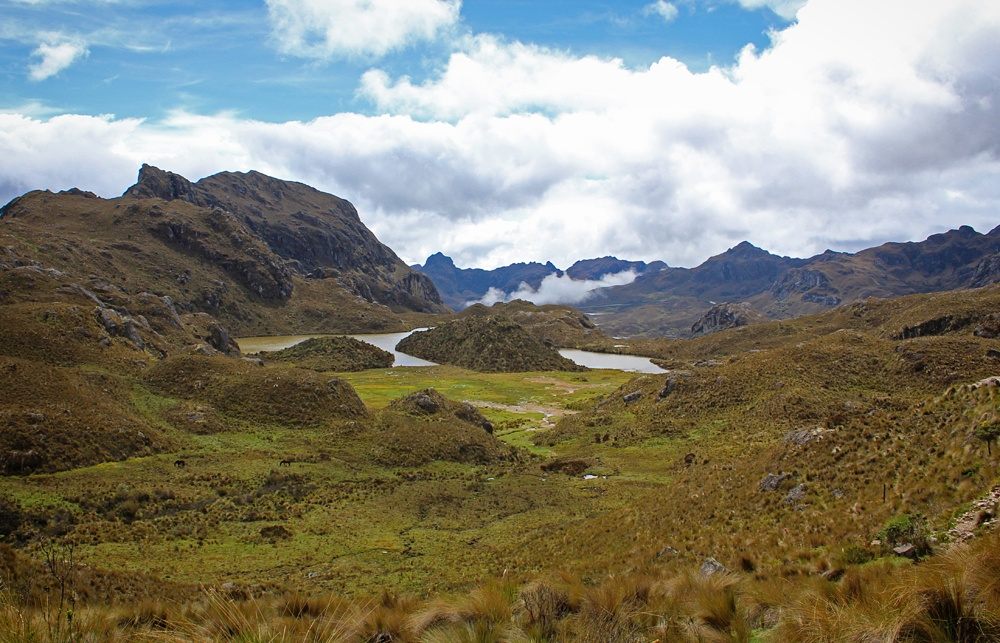 Chris Tarzan Clemens - Parque Nacional Cajas